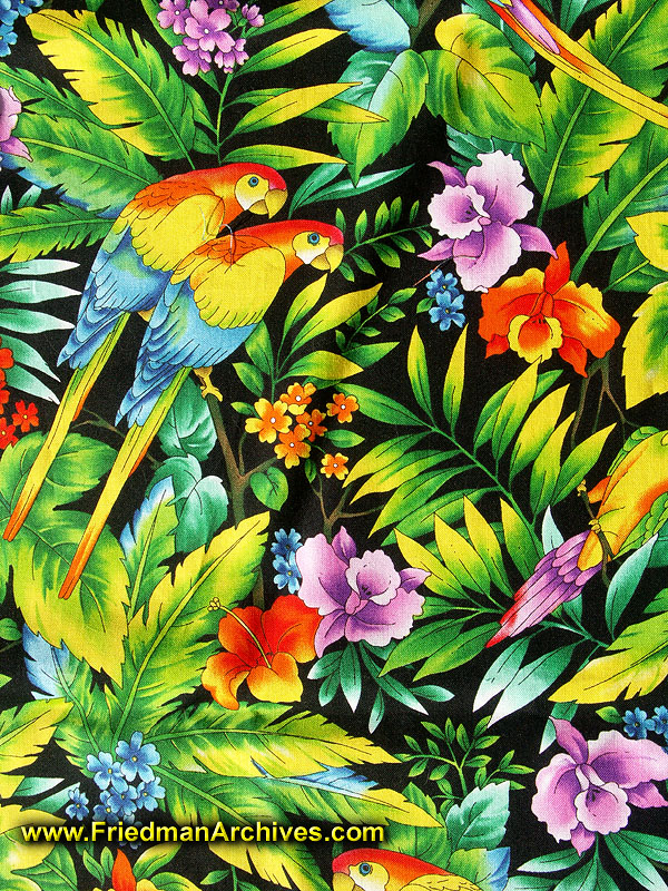 Tropical print background tumblr tropical patterns related keywords - Tropical Parrot Related Keywords Amp Suggestions Tropical