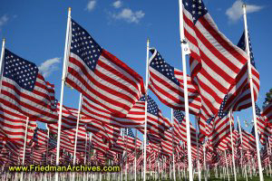 200 American Flags