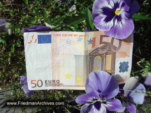 50 Euro Note and Flowers