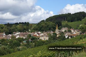 Beaune Establishing Shot