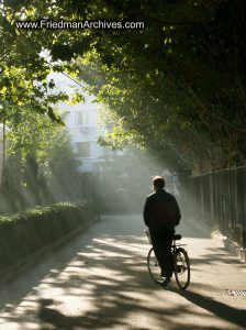 Bicycle in Sunlight