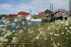 Boat Drawbridge and Flowers