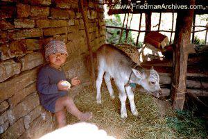 Boy and Donkey