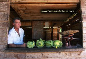 Cabbage Vendor