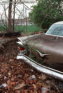Cadillac and Leaves