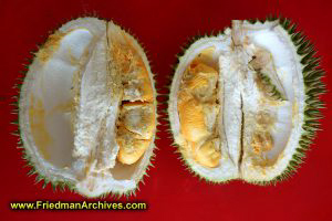 Durian!