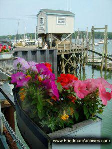 Freeport Flowers