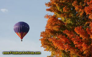 Hot Air Baloon and Red Leaves