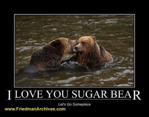 I Love You Sugar Bear