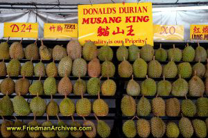 Lots of Durian!