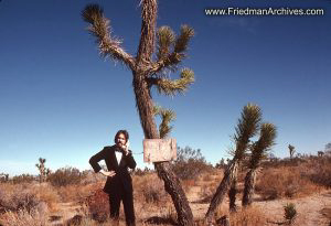 Man and Joshua Tree and Tux