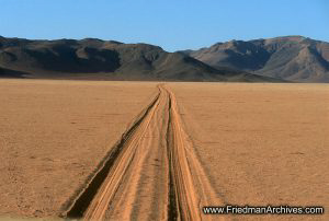 Namibia Gallery of Images Tracks in Sand