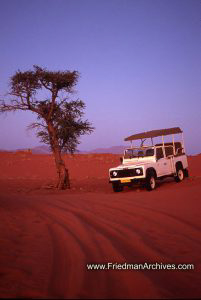 Namibia Images Jeep and Tree