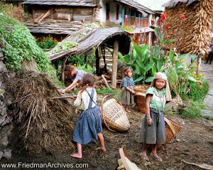Nepal Images - Farmworker Girls