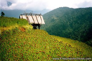 Nepal Images - Hut on Hill
