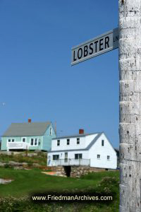 Lobster Lane