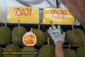 Selecting a Durian