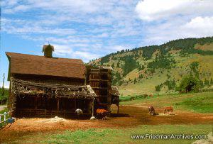 Shack on Pasture