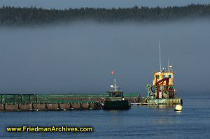 Ship Dock and Fog