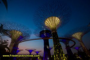 Singapore / Marina Bay Sands Gardens
