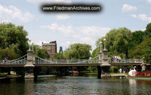 Swan-Lake-Bridge