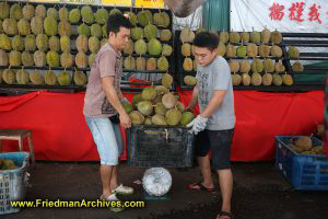 Workers moving crate of Durian